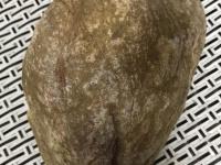 豆青满色翡翠手镯市场价格